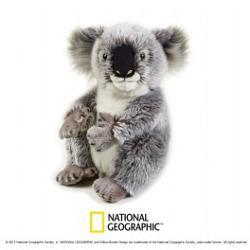 Plus NG Koala 26cm V770708 imagine librarie clb