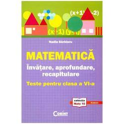 Matematica Invatare aprofundare Teste clasa a VI a