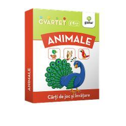 """Cvartet • Animaleeste un joc de c&259;r&539;i educativ În timp ce încearc&259; s&259; formeze cele mai multe """"cvartete"""" pentru a câ&537;tiga copilul înva&539;&259; despre animale î&537;i îmbog&259;&539;e&537;te vocabularul &537;i socializeaz&259; cu al&539;i copiiPachetul con&539;ine 32 de carduri împ&259;r&539;ite în 8 cvartete Fiecare cvartet con&539;ine un grup de"""