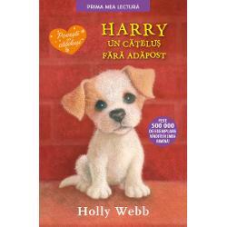 Harry, un catelus fara adapost (editie necartonata) imagine librarie clb