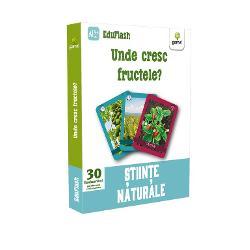 """Pachetul """"Unde cresc fructele"""" con&539;ine 30 de flashcarduri împ&259;r&539;ite pe categorii colorate distinct în func&539;ie de anotimp fructele exotice fiind clasificate separat Iconi&539;ele v&259; ajut&259; s&259; face&539;i clasific&259;ri suplimentare fructe care cresc sau nu în România fructe care cresc în copaci în tufe sau în arbu&537;ti etc Pe fa&539;&259;"""