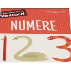 S&259; &238;nv&259;&539;&259;m despre numere