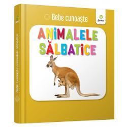 Util&259; pentru a-i înv&259;&539;a pe bebelu&537;i cuvinte noi cartea prezint&259; zece animale s&259;lbatice – câte o imagine pe fiecare pagin&259; Este cartonat&259; integral u&537;or de apucat &537;i rezistent&259; la r&259;sfoireSeria Bebe cunoa&537;te este dedicat&259; copiilor de vârst&259; mic&259; afla&539;i la primele interac&539;iuni cu cartea No&539;iunile sunt prezentate în perechi u&537;or de asociat în