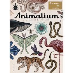 Bun venit la AnimaliumMuzeul este deschis la orice or&259;În s&259;lile sale vizitatorii de toate vârstele pot admira o colec&355;ie extraordinar&259; cu 160 de animale Ve&355;i afla secretele evolu&355;iei vie&355;ii ve&355;i intra în s&259;lile de disec&355;ie &537;i ve&355;i descoperi marea varietate a habitatelor terestre…Intra&355;i &351;i studia&355;i regnul animal în toat&259; splendoarea sa