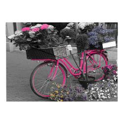 Mapaplastic inchidere cu capsa A4 design Bicicleta