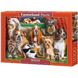 Numar piese3000 bucDimensiuni puzzle asamblat92 x 68 cmDimensiuni cutie - cmFormat cutie cartonEAN 5904438300501Etichete caini