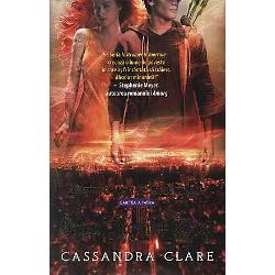Orasul Ingerilor CazutiCity of Fallen Angelseste volumul 4 din seriaInstrumente MortaleThe Mortal Instruments scrisa deCassandra ClareRazboiul a luat sfarsit iar Clary Fray revine la New York
