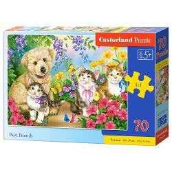 Brand CastorlandCod 070114Num&259;r piese70 bucDimensiuni puzzle asamblat40 x 29 cmDimensiuni cutie - cmFormat cutie carton