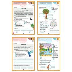 Materialul se prezint&259; sub forma unui set compus din2 x Test de evaluare ini&539;ial&259; pentru disciplina Comunicare în limba român&259;2 x Test de evaluare ini&539;ial&259; pentru disciplina Matematic&259; &537;i explorarea mediuluiFiecare test are dou&259; pagini &537;i este înso&539;it de solu&539;ii variant&259; pdf interactiv GRATUIT&258; - acestea se pot desc&259;rca de pe site-ul nostru din documenta&539;ia