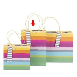 Punga Cadou Dungi Multicolore 18X25X8Cm- 204539 A204541