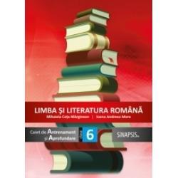 Limba si literatura romana Caiet de antrenament si aprofundare clasa a VI a