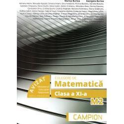 Culegere de matematica clasa a a XI a M2 imagine librarie clb