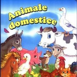 Animale domestice pliant