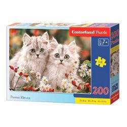 Brand CastorlandNum&259;r piese200 bucVârsta8 aniDimensiuni puzzle asamblat40 x 29 cmMaterial carton