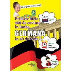 Primele mele 480 de cuvinte in limba germana in 40 de teme