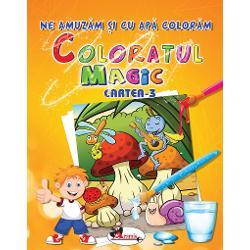 Coloratul magic - Cartea 3