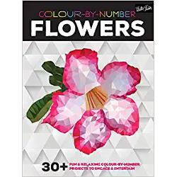 Colour-by-Number Flowers