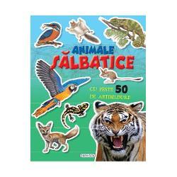 Cauta si lipeste Animale salbaticeCu aceasta carte vei pasi in frumoasa lume a animalelor salbaticeCauta abtibildurile si completeaza ilustratiileCartea are peste 50 de abtibilduri