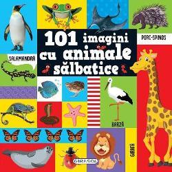 Pentru micutii iubitori de animale editura Girasol vine in ajutorul lor cu o carte plina de ilustratii frumoase despre lumea fascinanta a animalelorCartea este plina de ilustratii cu animale salbatice Afla si tu despre cele mai frumoase cele mai misterioase si cele mai fioroase vietuitoare din regatul animalelor 101 imagini cu animale salbatice are toate paginile cartonate iar coperta este cartonata si buretata