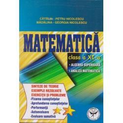 Matematica clasa a XI a - Sinteze de teorie exercitii si probleme