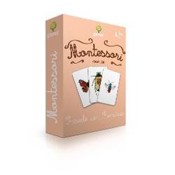 Insecte din Romania Carti de joc educative Montessori Seria 4