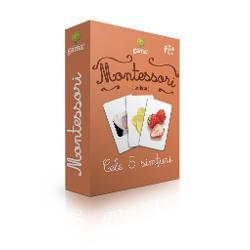 Cele 5 simturi Carti de joc educative Montessori Seria 4