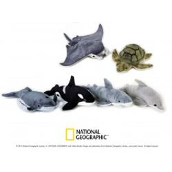 Jucarie din plus National Geografic Animal Oceanic 23 cmDescopera lumea animalelor alaturi de plusurile National Geografic Copii indragesc delfinii jucausi pisicile de mare rechinii si brostele testoase balenele dragalasele foci si orcileSuprafata este lavabilap stylecolor 646464; padding-bottom