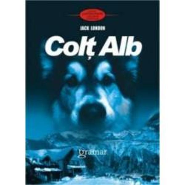 Colt Alb este un roman de aventuri scris in 1906 de scriitorul american Jack London Naratiunea urmareste viata lupului Colt Alb de la nasterea sa din apropierea unui sat indian pana la mutarea sa in San Francisco si nasterea propriilor sai pui
