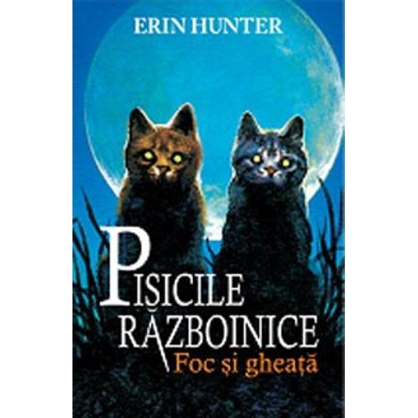 """Bestseller interna&539;ionalDescoperi&539;i o serie de c&259;r&539;i pentru copii a c&259;ror popularitate a dep&259;&537;it orice a&537;tept&259;ri """"Pisicile r&259;zboinice"""" s-au vândut în mai mult de 14 milioane de volume în peste 20 de &539;&259;ri &537;i au ap&259;rut pe lista New York Times a celor mai vândute titluriDe genera&539;ii întregi patru clanuri de pisici"""