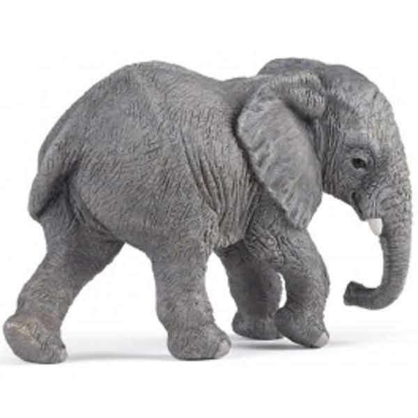 Elefant african tanar - Figurina PapoJucariaElefant african tanareste o figurina pictata manual care aduce produsul foarte aproape de realitate prin cele mai mici detalii realizate cu o acuratete inaltaFigurinaElefant african tanarpoate fi o jucarie educationala pentru
