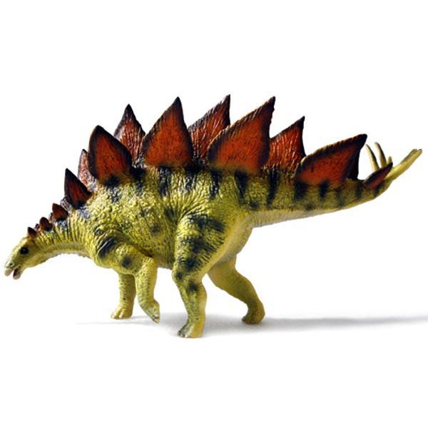 Stegosaurusera un dinozaur erbivor al erei Mezozoica din perioada Jurasicului acum 155 milioane de ani A fost un dinozaur patruped cu labele scurte si gheare in forma de copita si impresionau prin perechile de placi osoase de pe spate cat si cu spinii de pe coada Particularitatea lui era creierul extrem de mic pe care il avea de dimensiunea unei nucibr