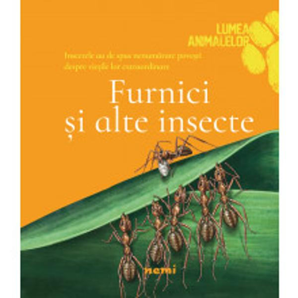 Pe Pamant exista mai multe specii de insecte decat toate celelalte specii de animale puse la un locCele mai multe insecte pot zbura si toate au de spus nenumarate povesti despre vietile lor extraordinare