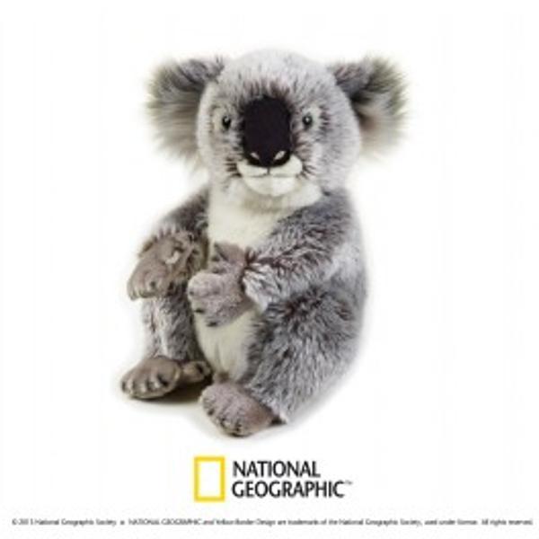 Jucarie din plus National Geografic Koala 26 cmDescopera lumea animalelor alaturi de National GeographicCopii iubesc acest animal special cu blanita fina si fetisoara simpaticap