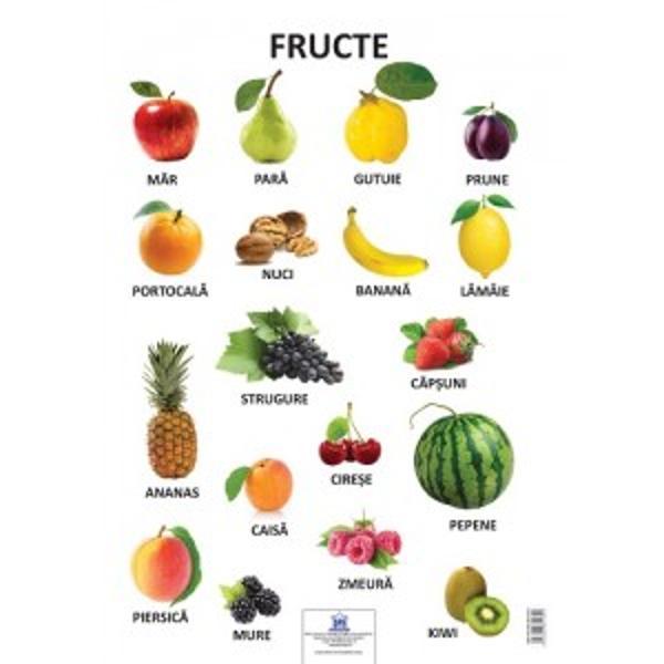 Plansa aceasta educativa ilustreaza fructe precum- Mar- Para- Gutuie- Prune-  Portocala-  Nucip