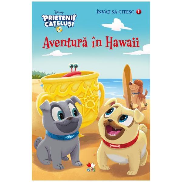 In timp ce se aventureaza prin Hawaii Rolly intalneste pe plaja niste crabi Va reusi oare
