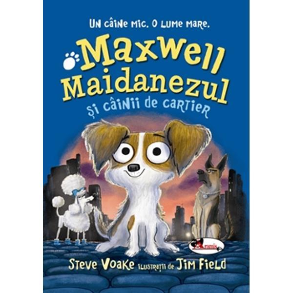 """Maxwell Maidanezul e mic dar inima lui e mare &537;i dornic&259; de aventur&259; Împreun&259; cu o band&259; de câini plimb&259;re&539;i &537;i hazlii Maxwell porne&537;te în c&259;utarea prietenei pierdute pe str&259;zile ora&537;ului unde afl&259; despre existen&539;a """"Colec&539;ionarei"""" – co&537;marul absolut al câinilor de pretutindeni Pericolul pânde&537;te la fiecare pas dar printre c&259;ut&259;ri e mereu loc"""