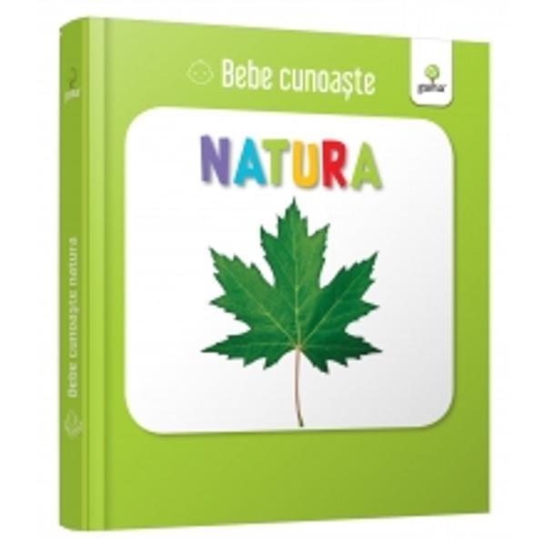 Util&259; pentru a-i înv&259;&539;a pe bebelu&537;i cuvinte noi cartea prezint&259; zece imagini cu vie&539;uitoare sau cu alte elemente naturale pe care copiii le pot întâlni în parc Este cartonat&259; integral u&537;or de apucat &537;i rezistent&259; la r&259;sfoireSeria Bebe cunoa&537;te este dedicat&259; copiilor de vârst&259; mic&259; afla&539;i la primele interac&539;iuni cu cartea No&539;iunile sunt prezentate în