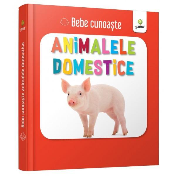 Util&259; pentru a-i înv&259;&539;a pe bebelu&537;i cuvinte noi cartea prezint&259; zece animale domestice – câte o imagine pe fiecare pagin&259; Este cartonat&259; integral u&537;or de apucat &537;i rezistent&259; la r&259;sfoireSeria Bebe cunoa&537;te este dedicat&259; copiilor de vârst&259; mic&259; afla&539;i la primele interac&539;iuni cu cartea No&539;iunile sunt prezentate