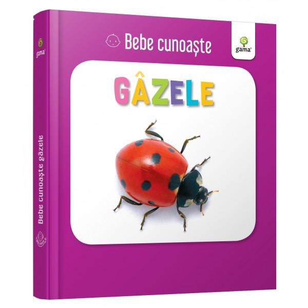 Util&259; pentru a-i înv&259;&539;a pe bebelu&537;i cuvinte noi cartea prezint&259; zece insecte – câte o imagine pe fiecare pagin&259; Este cartonat&259; integral u&537;or de apucat &537;i rezistent&259; la r&259;sfoireSeria Bebe cunoa&537;te este dedicat&259; copiilor de vârst&259; mic&259; afla&539;i la primele interac&539;iuni cu cartea No&539;iunile sunt prezentate în