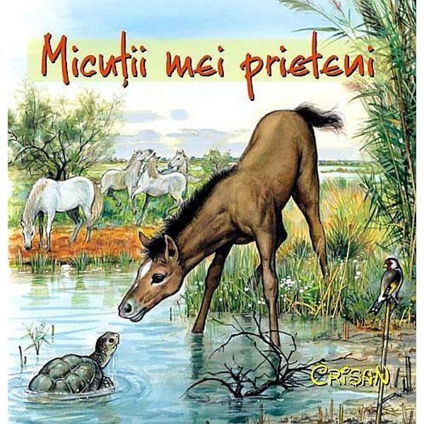 Cartea aceasta exceptional ilustrata de Pierre Couronne realizata intr-un format mic si cartonata este special conceputa pentru cei foarte mici care sunt invitati la o prima intalnire cu animalele domestice si salbatice