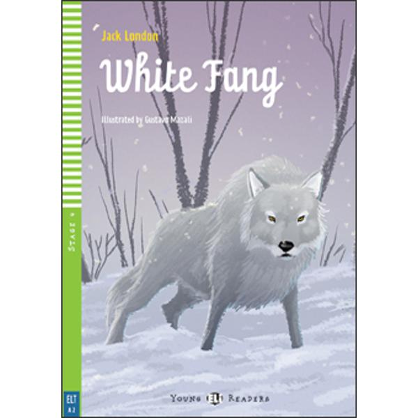 This is the story of White Fang a wild wolf who falls into the hands of men They use White Fang's strength and are cruel to him so that he becomes fierce and dangerous But through Scott a different type of man White Fang learns that between animals and people there can be love and respect and loyalty