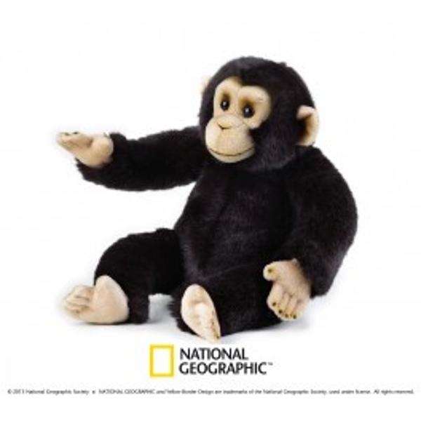 Jucarie din plus National Geografic Cimpanzeu 36 cmDescopera lumea animalelor alaturi de National GeographicCimpanzeii sunt o specie de maimute pe care o intalnim in padurile tropicale in regiunile impadurite si preriile Africane Aceste maimute sunt foarte inteligente si au