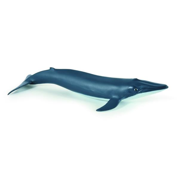 Figurina Papo-Pui balena albastra este o jucarie educativaDimensiune 205&160;cmRecomandat 3 ani