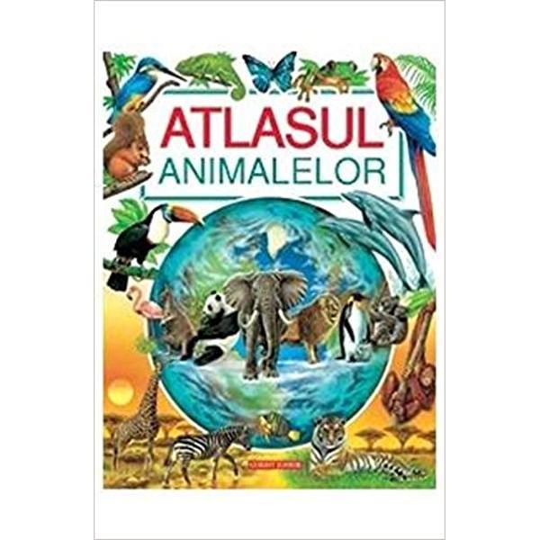 Destinat copiilor din ciclul primar 6-10 ani acest atlas ii va insoti intr-o expeditie de descoperire a animalelor de pe toate continentele lumii De-a lungul a peste 40 de pagini atractiv ilustrate cu texte scurte si simple copiii vor invata sa cunoasca si sa iubeasca animalele alaturi de care traim pe planeta Vor descoperi trasaturile adeseori extraordinare ale diferitelor specii si mai ales si le vor putea imagina in mediul lor natural