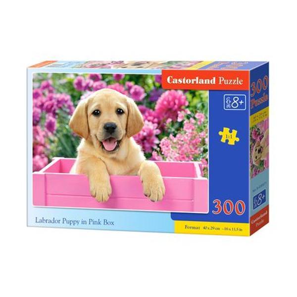 Puzzle pentru copii de peste 8 ani cu 300 de pieseDimensiunea puzzle-ului finit este de 40 x 29 cmVarsta recomandata 8