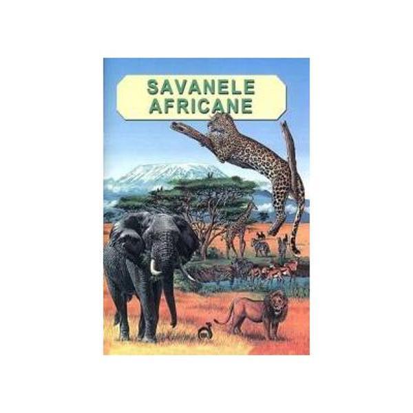 Ce este o savana Ce plante intalnim acolo Cum s-au adaptat animalele la acest mediu de viata Carpr pericole trebuie sa le faca fata zilnicInvestigati universul exotic al savanei pentru a afla raspunsuri la aceste intrebari si nu numai Veti descoperi de asemenea cum oamenii pot distruge aceste ecosisteme si ce se poate face pentru a le proteja