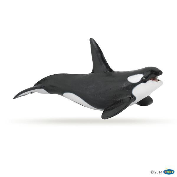 Balena ucigasa - Figurina PapoJucaria&160;Balena ucigasa este o figurina pictata manual care aduce produsul foarte aproape de realitate prin cele mai mici detalii realizate cu o acuratete inaltaFigurina Balena ucigasa este o jucarie educationala care poate fi colectionata de catre copii de toate varsteleNu contine substante toxiceDimensiuni19x9x9 cmVarsta 3