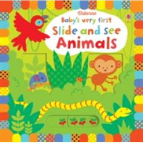 An engaging interactive board book specially designed for very young children full of vivid colours stylish illustrations and friendly animals Simple slider mechanisms allow a picture to be transformed as a bush baby peers out from his tree trunk home some meerkats pop up from their underground burrows and a monkey swings through the trees