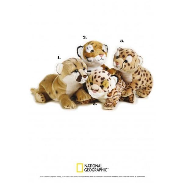 Jucarie din plus National Geographic Pui felina 26cmCompleteaza colectia ta de animale cu unul dintre acesti pui de felinaSuprafata este lavabilaDimensiune 26cmVarsta