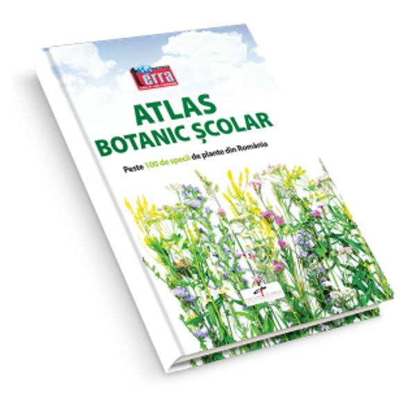 """Atlasul este deosebit de util elevilor dar &537;i celor pasiona&539;i de lumea plantelor Con&539;ine fotografii color reprezentând peste 100 de specii de plante din flora RomânieiLucrarea are girul &537;tiin&539;ific al prof univ dr Paulina ANASTASIU Director al Gr&259;dinii Botanice """"D Brândz&259;"""" Universitatea din Bucure&537;ti"""